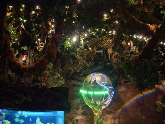 las_rainforest3